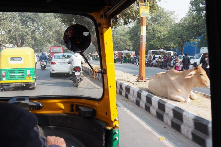 indien. delhi